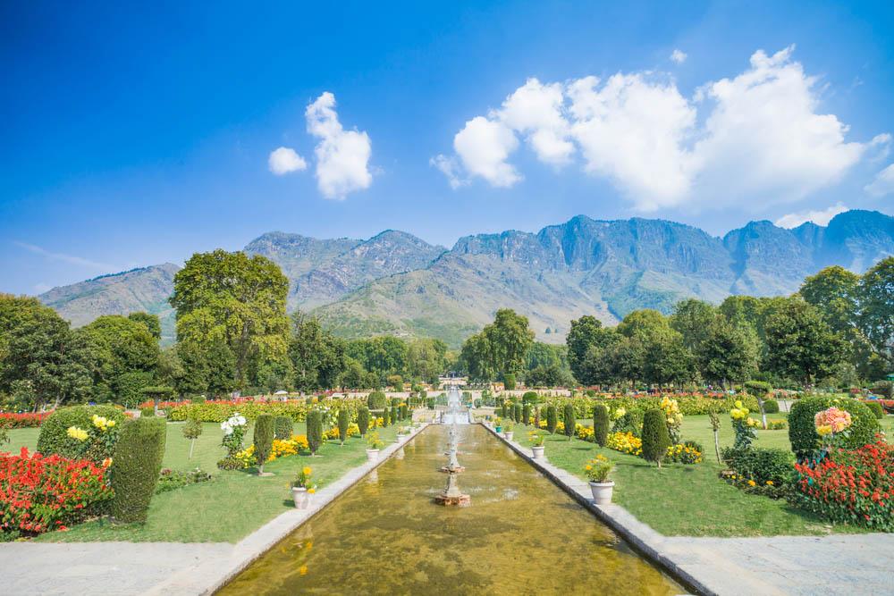 Srinagar 2