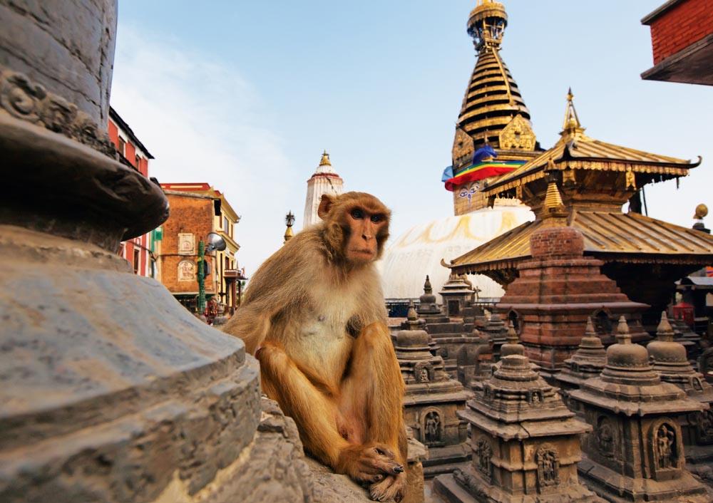 Backpacken Nepal