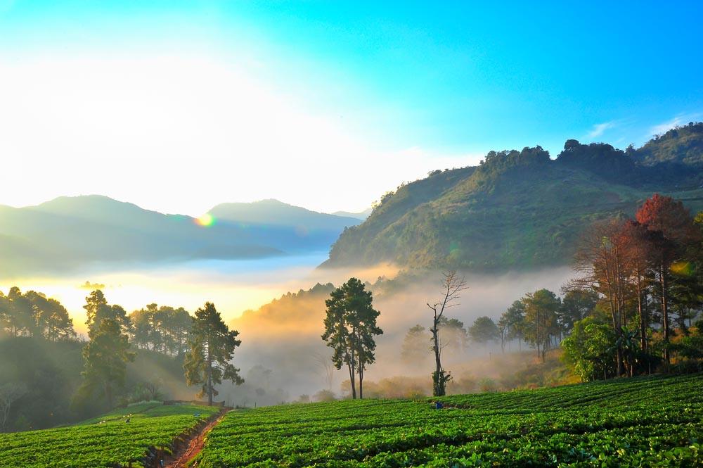 trekking Chiang Mai