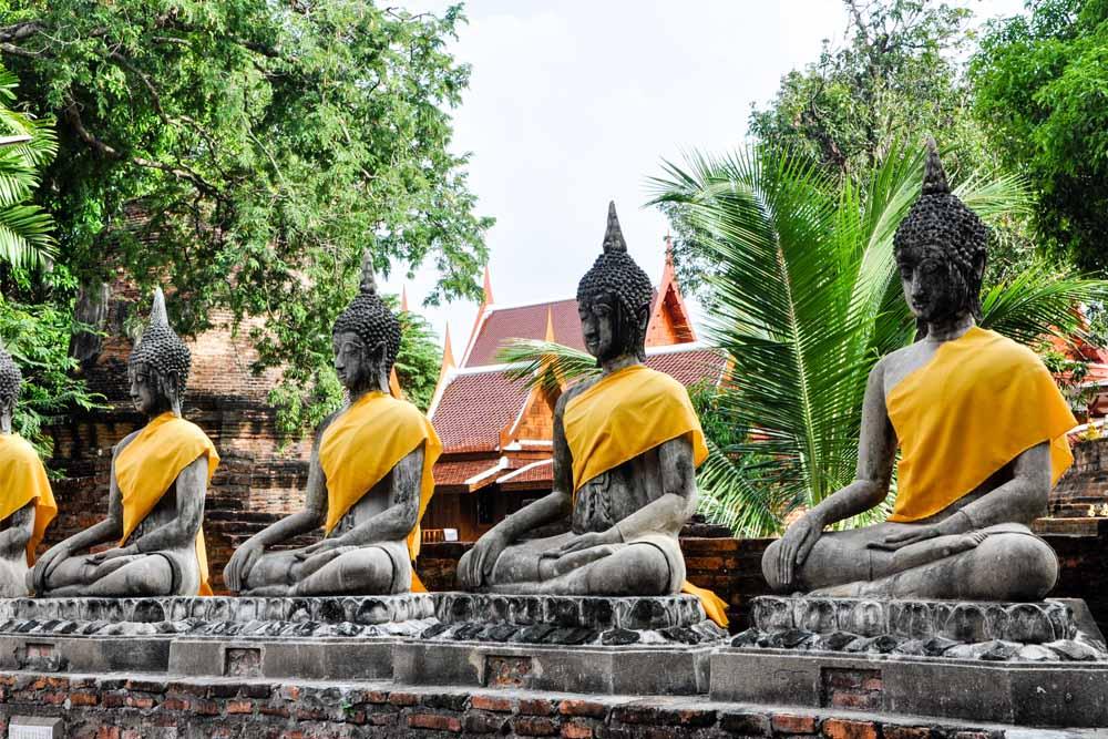 Reis Thailand