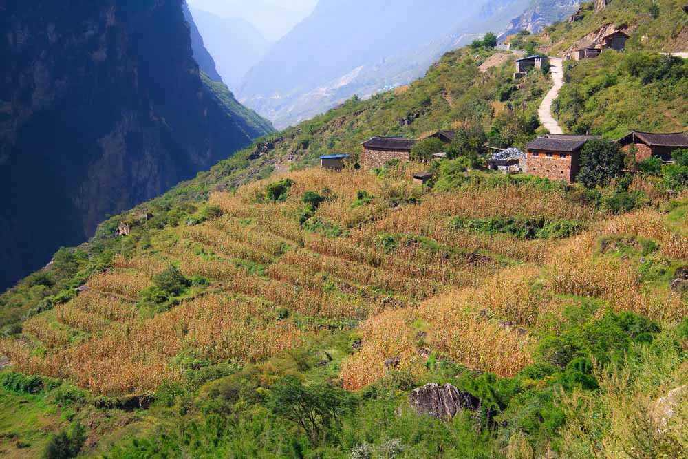 Lijiang 9