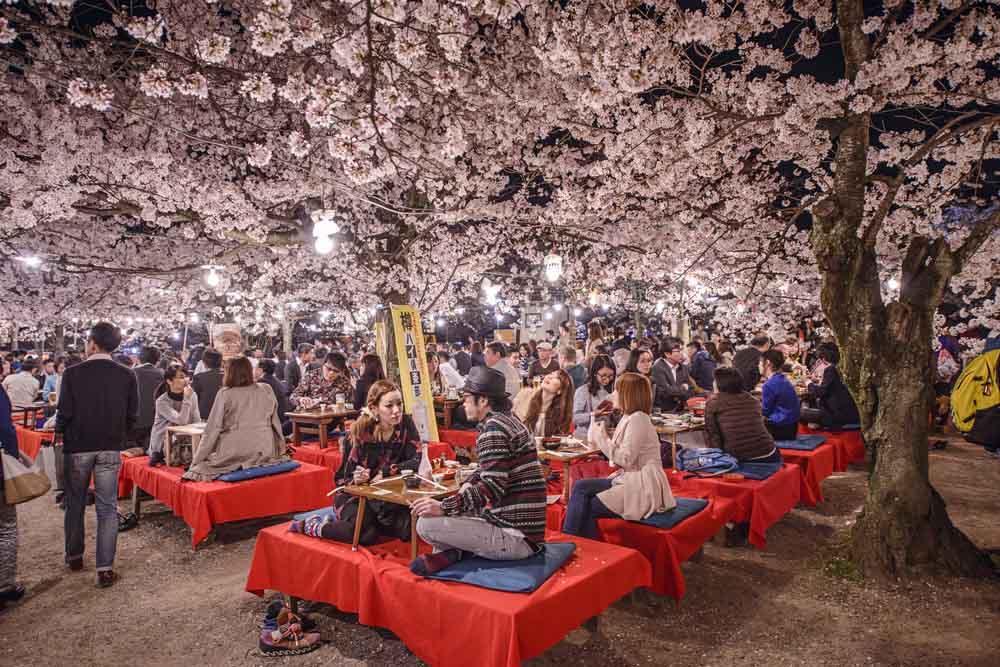 Local Kyoto 2