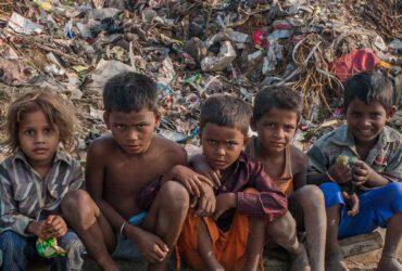 armoedeazie